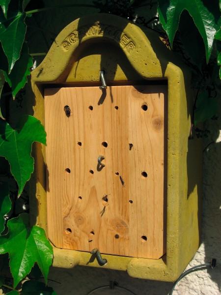 Insektennisthaus zum Beobachten