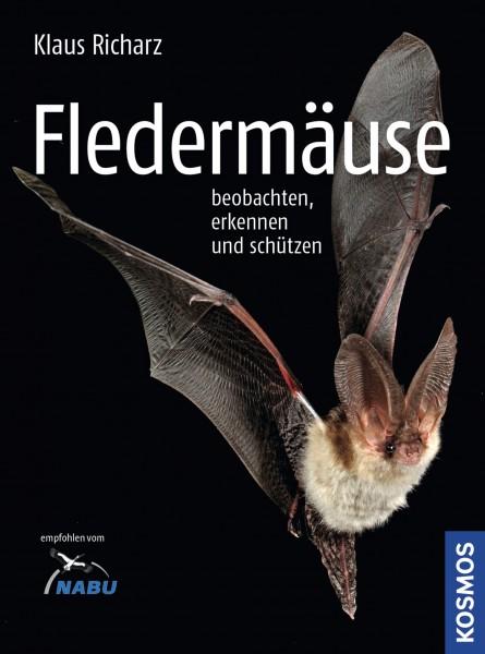 Fledermäuse - beobachten, erkennen und schützen