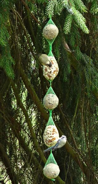 Tedje Meisenknödel-und-Erdnussbeutel-Futterkette