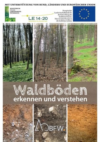 Bestimmungsfächer - Waldböden erkennen und verstehen