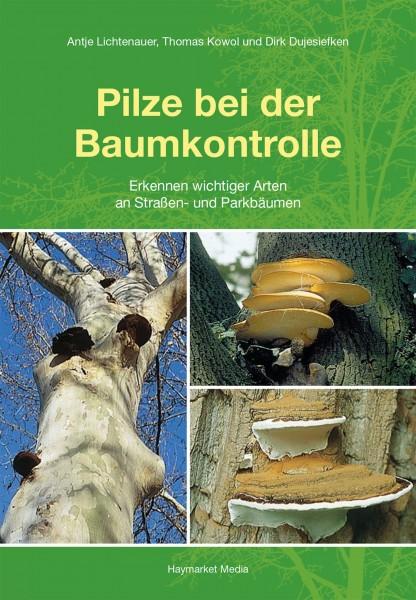Pilze bei der Baumkontrolle - Erkennen wichtiger Arten an Straßen- und Parkbäumen