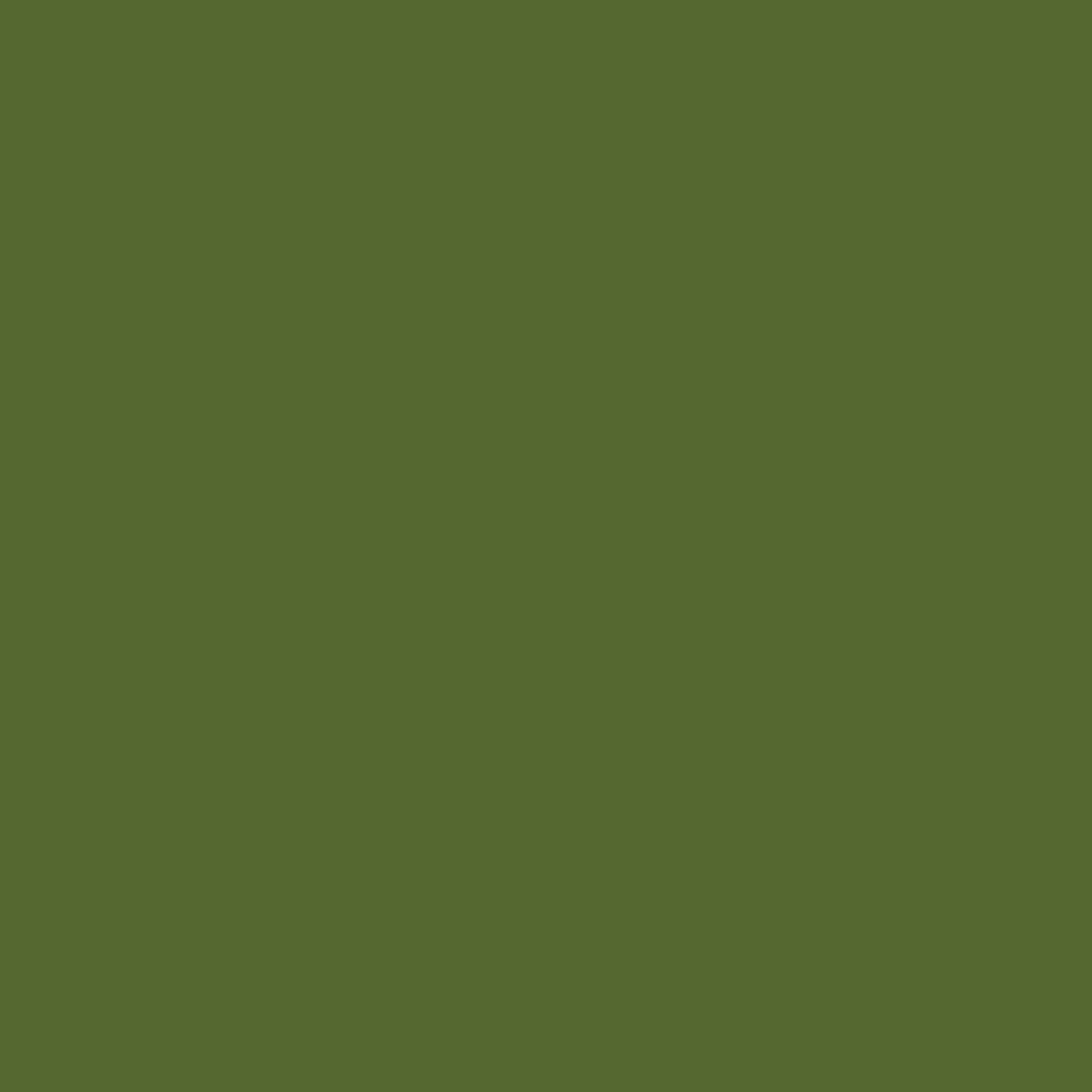 Olive-schwarz
