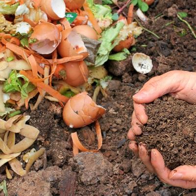 terra-preta-kompost