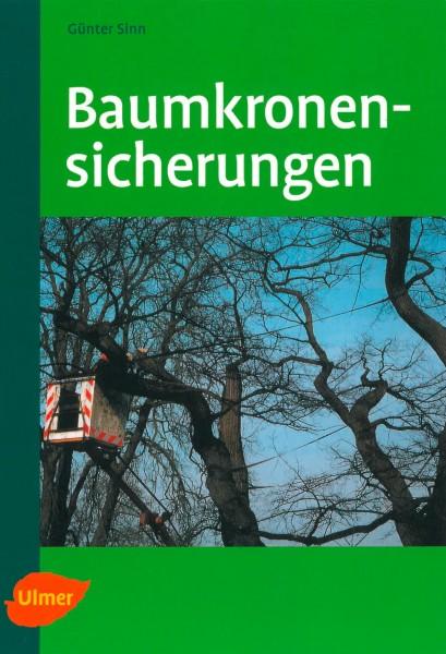 Baumkronensicherung – Grundlagen, Materialien und ihre richtige Verwendung