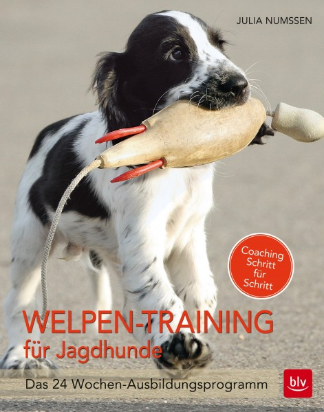 Welpen-Training für Jagdhunde - Das 24 Wochen-Ausbildungsprogramm