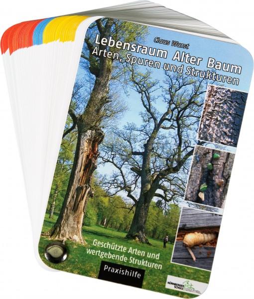 Lebensraum Alter Baum - Arten, Spuren und Strukturen