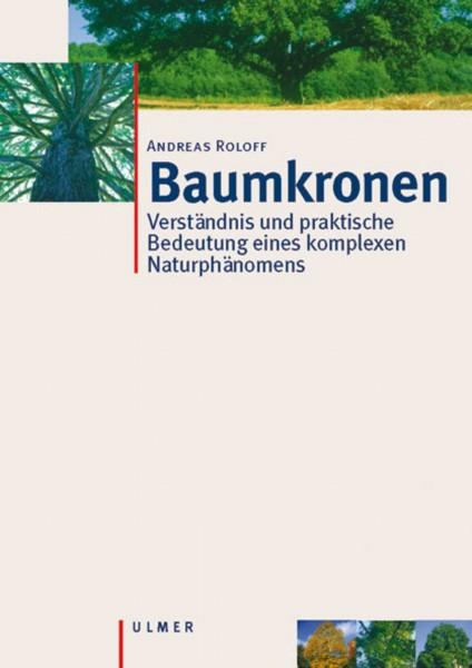 Baumkronen - Verständnis und praktische Bedeutung eines komplexen Naturphänomens