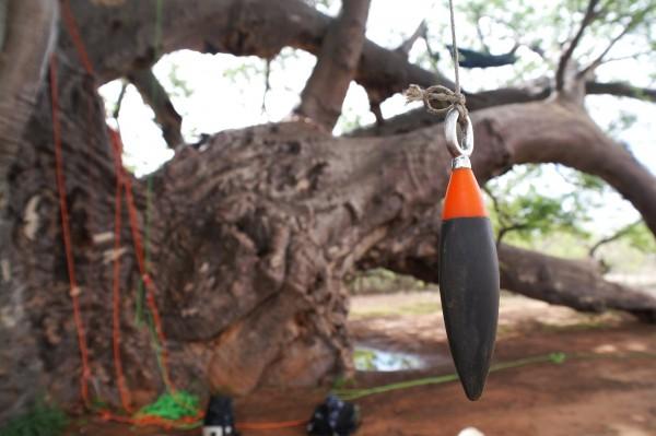 Wurfgewicht Throwpod