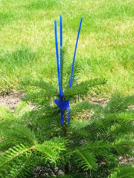 PlantaGard Verbissschutzmanschette Cactus Pro