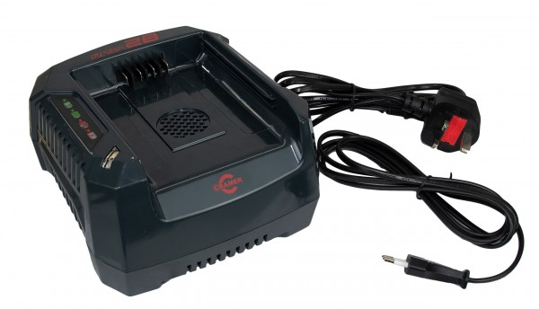 Portable Winch Quick Recharger 82 V