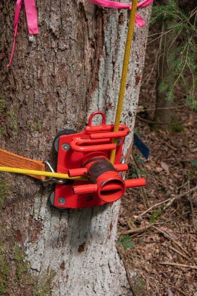 Tree Runner Rigging-Poller/Abseilbremse P500
