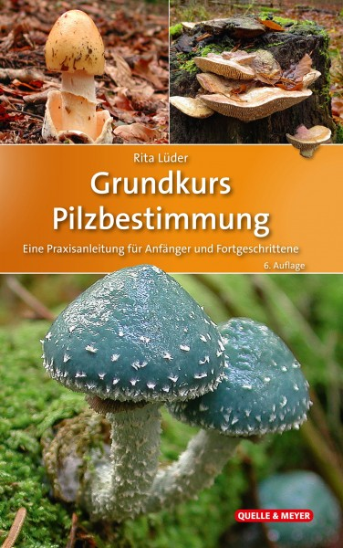 Grundkurs Pilzbestimmung - Eine Praxisanleitung für Anfänger und Fortgeschrittene (A foundation course on identifying mushrooms and fungi - a practical guide for beginners and experts) Text in German