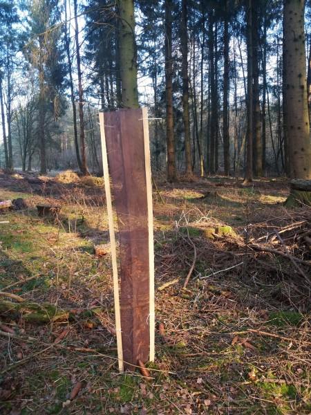 PlantaGard Baumschutz-Gitterhülle Freiwuchs-Bio-Light 120