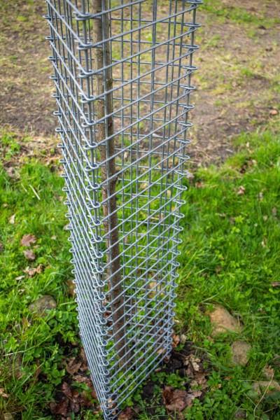 PlantaGard Einzelbaumschutz-Drahtelement 150 x 35 cm