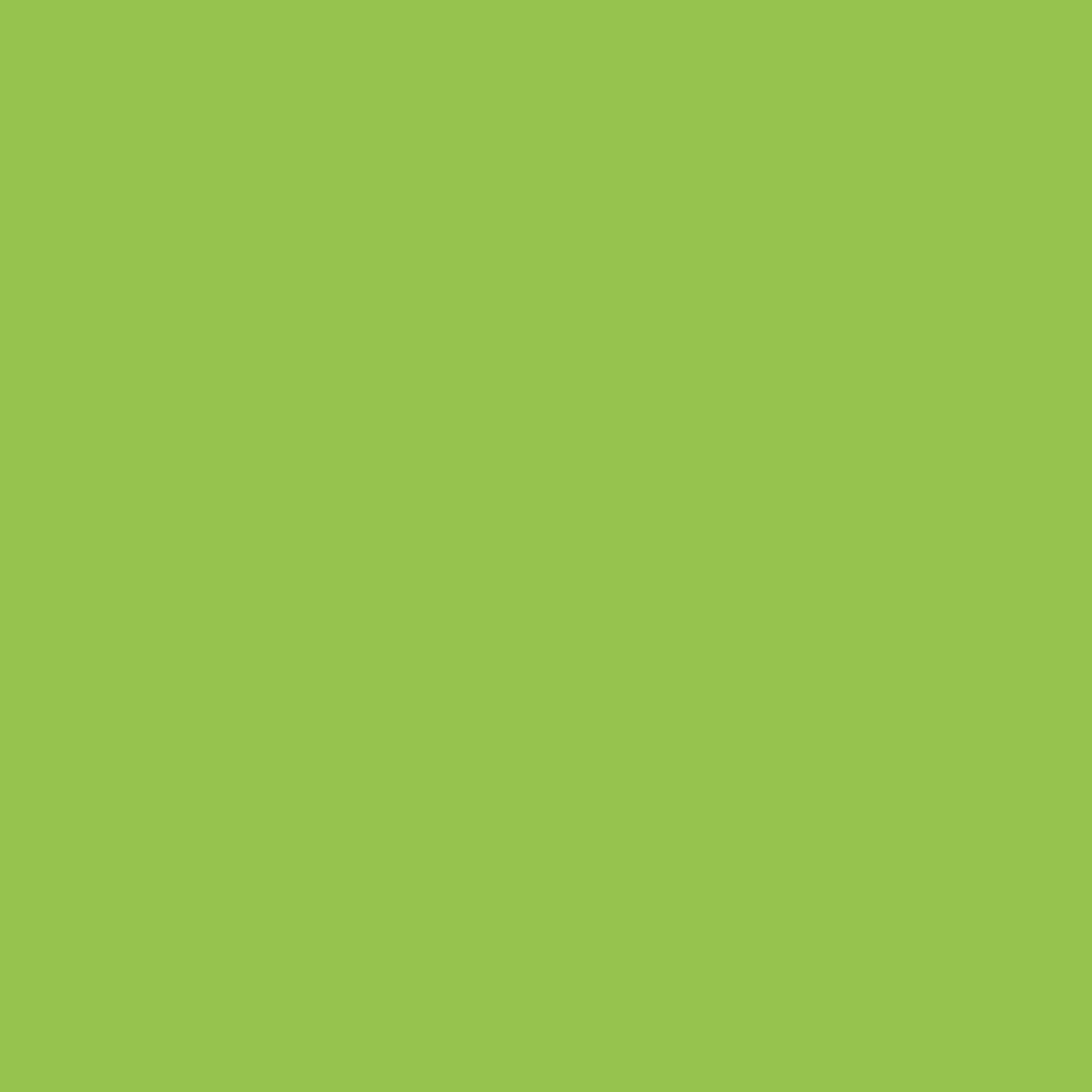 Cactus-lime