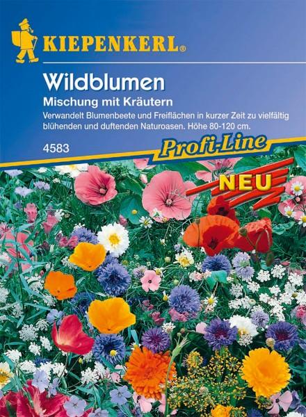 Wildblumenmischung mit Kräutern