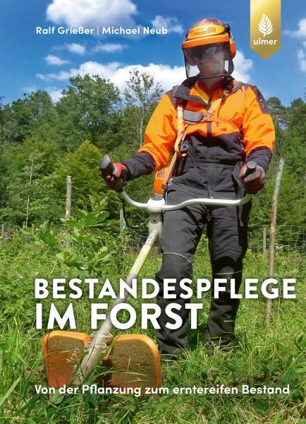 Bestandespflege im Forst - Von der Pflanzung zum erntereifen Bestand