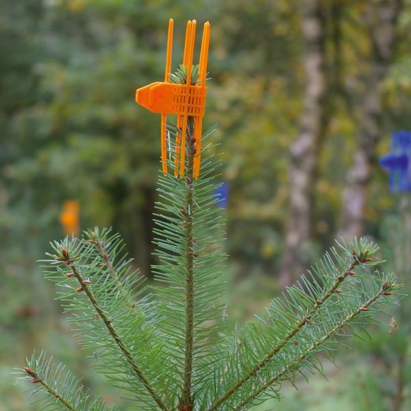PlantaGard Verbissschutzmanschette Cactus
