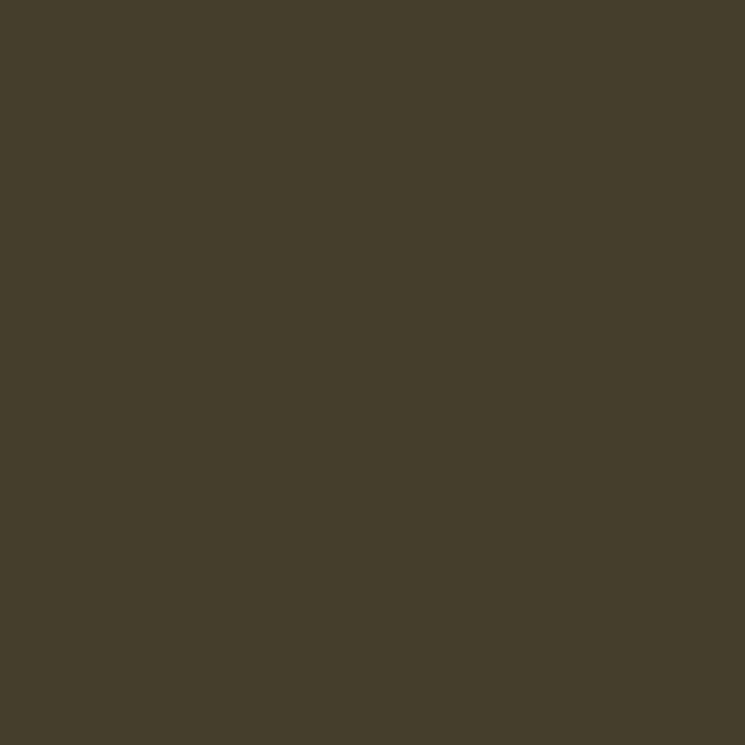 Dark olive-sand stone