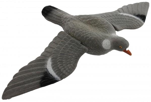 Beflockter, fliegender Lockvogel Taube