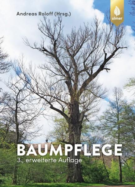 Baumpflege, Baumbiologische Grundlagen und Anwendungen