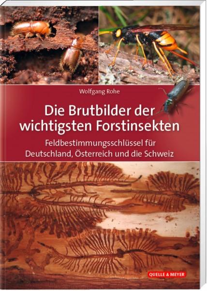 Die Brutbilder der wichtigsten Forstinsekten (Breeding behaviour of the most important forest insects) Text in German.