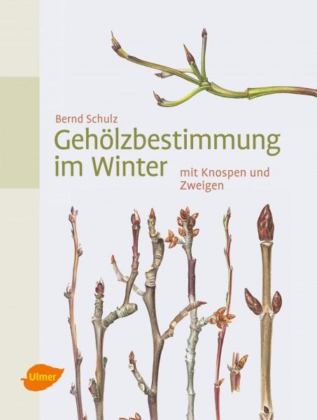 Gehölzbestimmung im Winter - mit Knospen und Zweigen (Identifying woody plants in winter - with buds and twigs). Text in German.