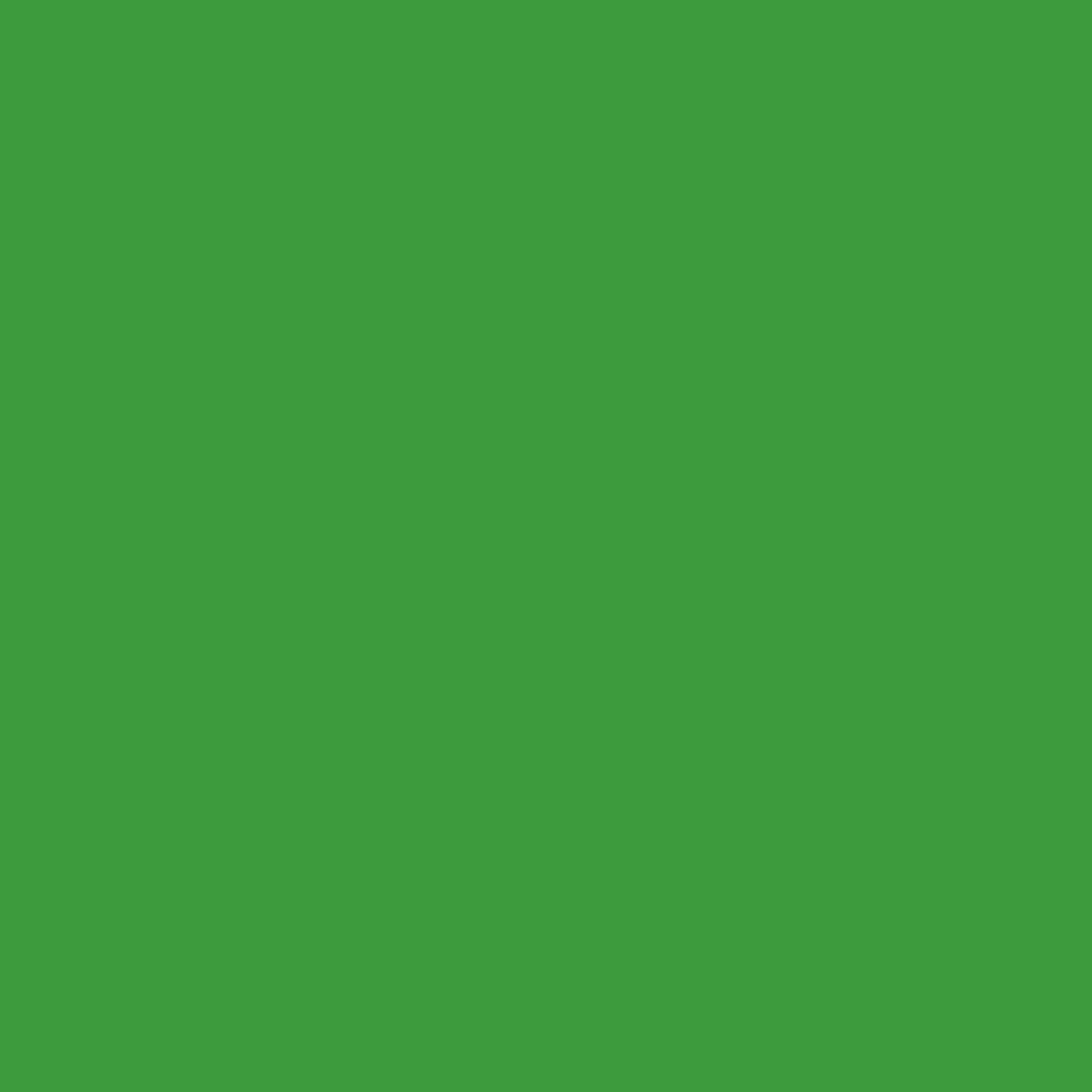 Grün-bunt