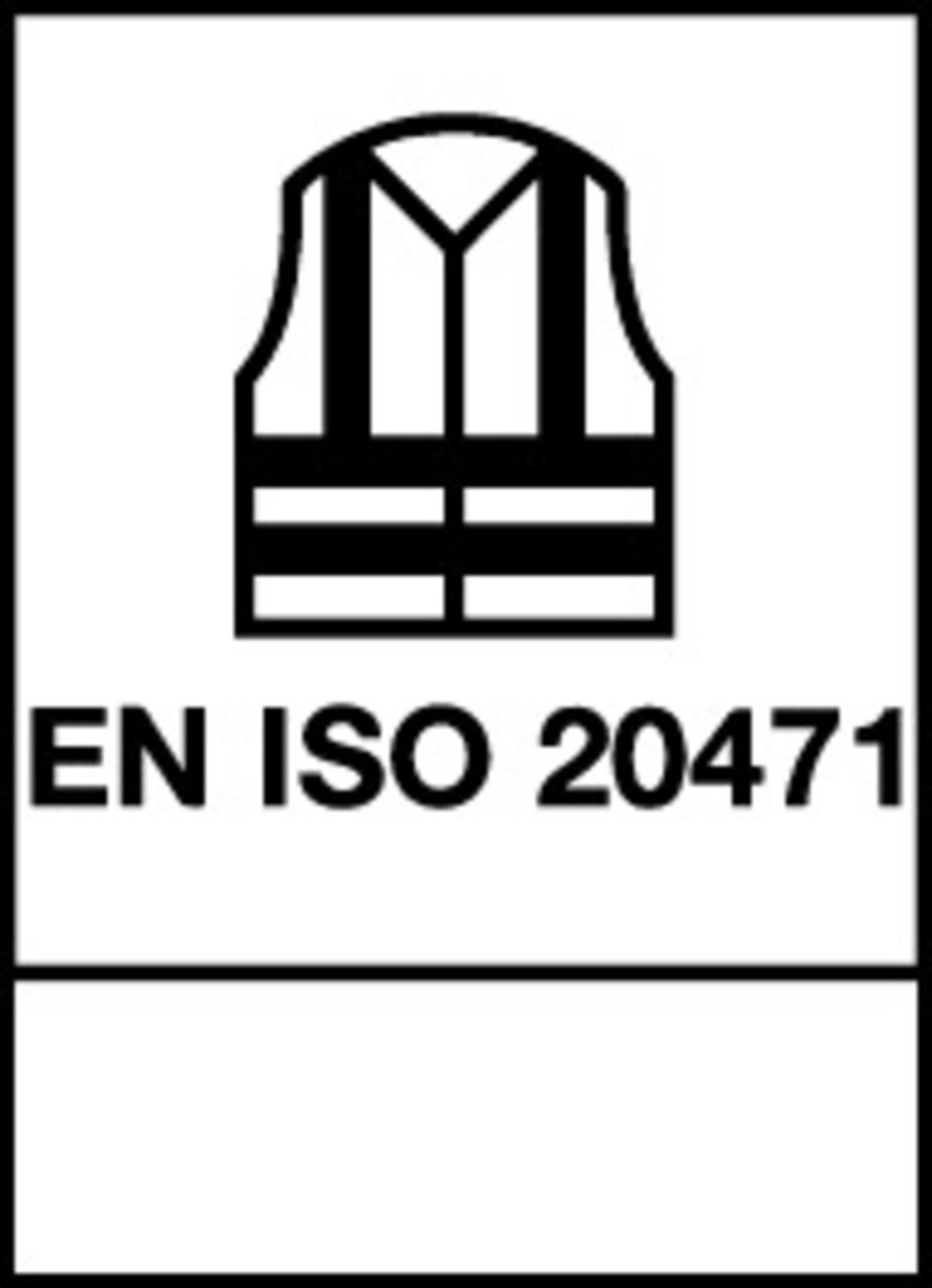 104733