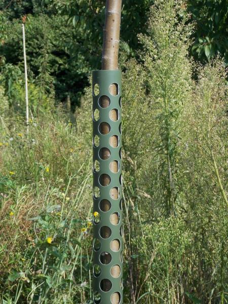 PlantaGard Baumschutz Anti-Knabb