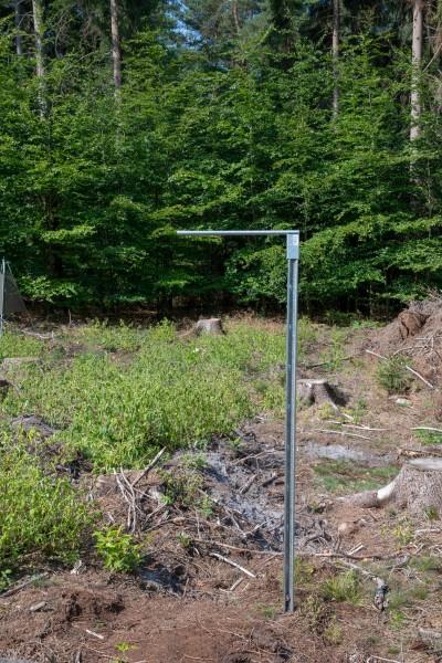 Single Pole Stand for Bark Beetle Slot Traps